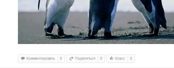 Раскрутка группы в Одноклассниках
