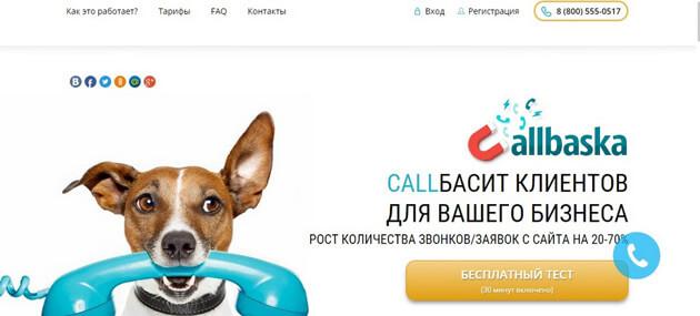 Сервис обратных звонков CallBaska