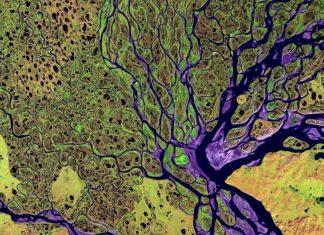 Изменения в настройках геотаргетинга Директа: Забайкалье и Бурятия теперь в Дальневосточном округе