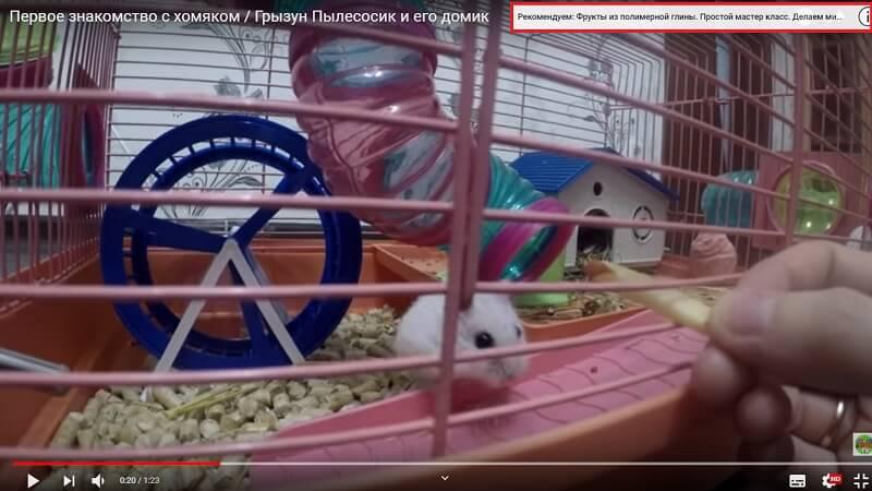 http://pic.rutube.ru/video/fa/d6/fad68d8a5cb04f6515c99e5d719ffb1f.jpg