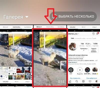 Как добавить видео в Инстаграм: с компьютера или телефона | IM