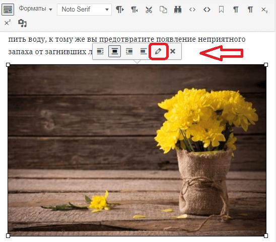 Оптимизация картинок на wordpress