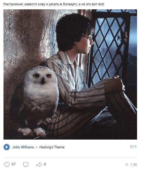 День рождение Гарри Поттера