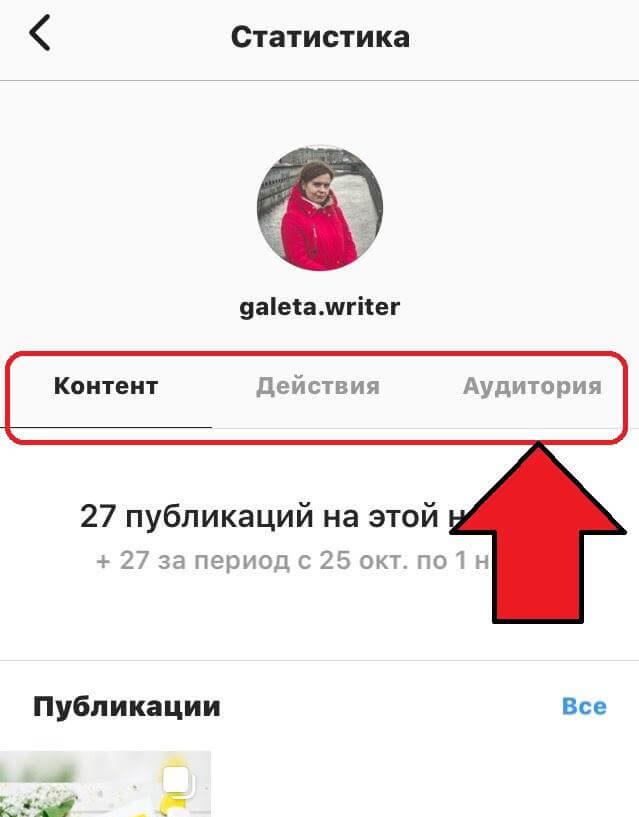 Анализ аккаунта в Инстаграм