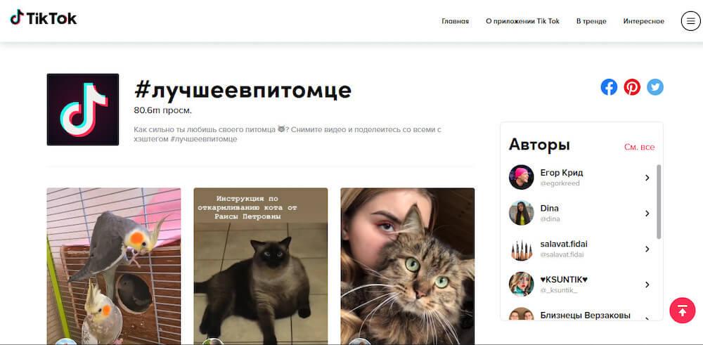 Примеры популярных хэштегов для рекомендаций TikTok