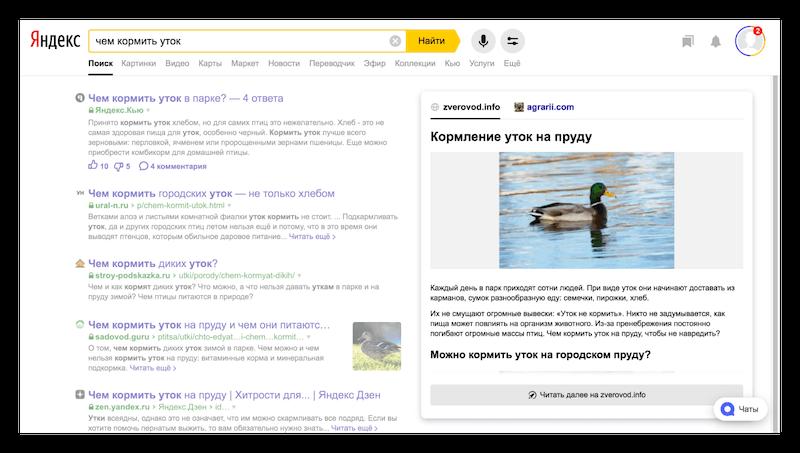Специальные ответы в поиске Яндекс