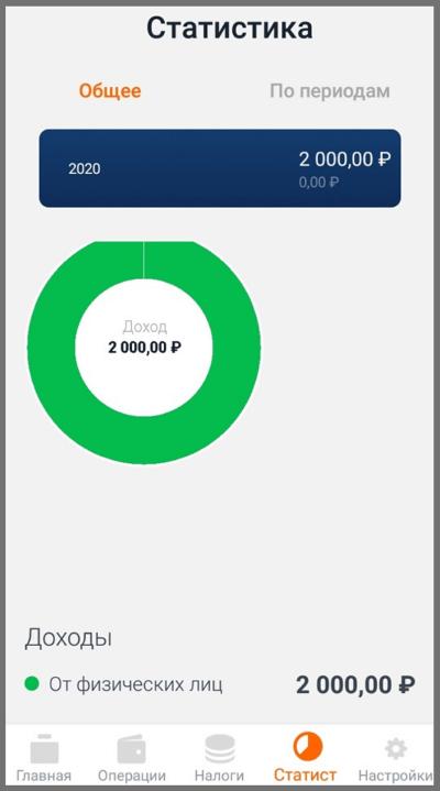 Где смотреть статистику по доходам в мобильном приложении «Мой налог»