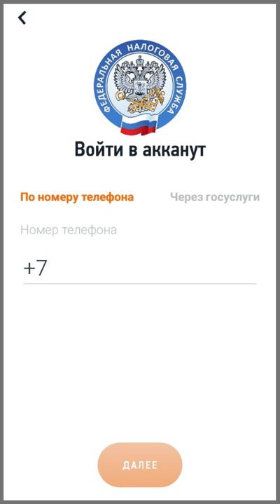 Авторизация в мобильном приложении «Мой налог»