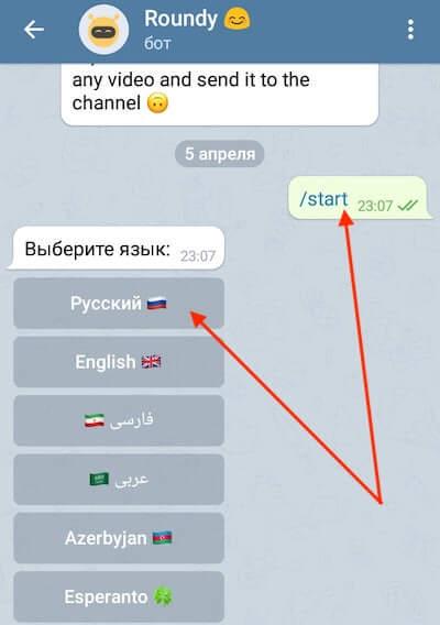 Бот для создания круглых видео в Телеграм