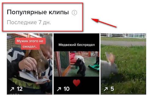 Популярные клипы в TikTok