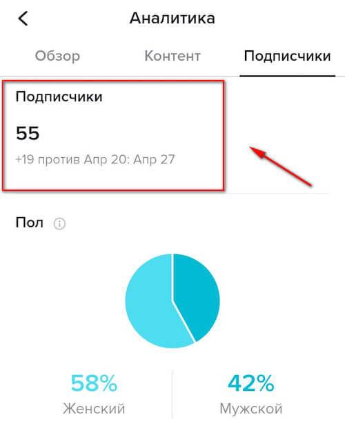 Анализ аудитории в TikTok