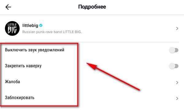 Как отключить уведомления о сообщениях в Тик-Ток