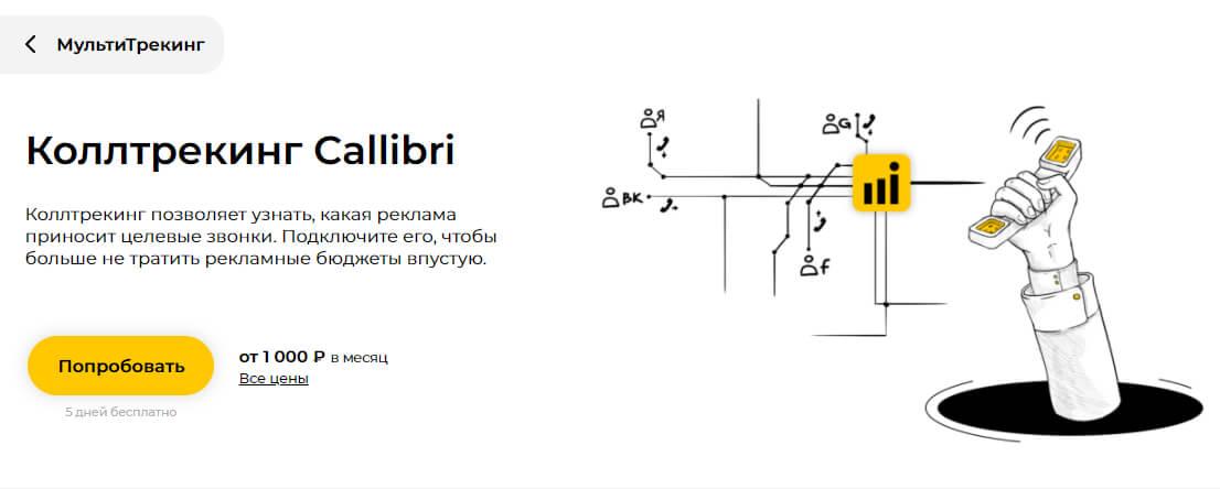 Как работать в Callibri