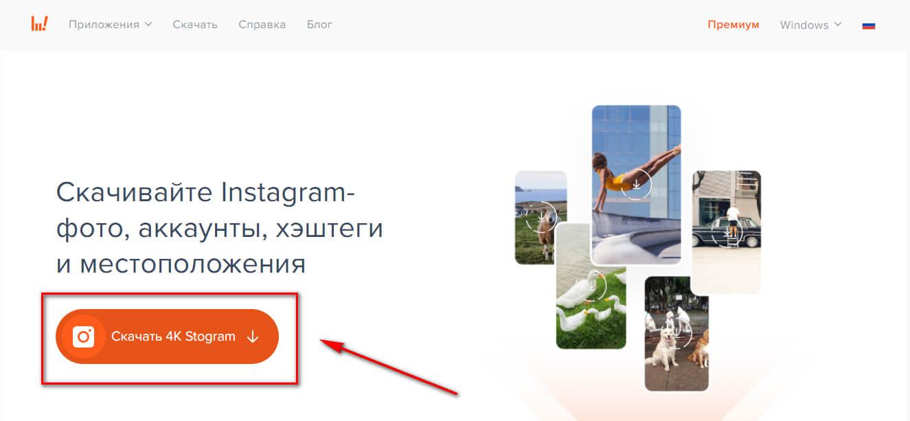 Как использовать 4K Stogram