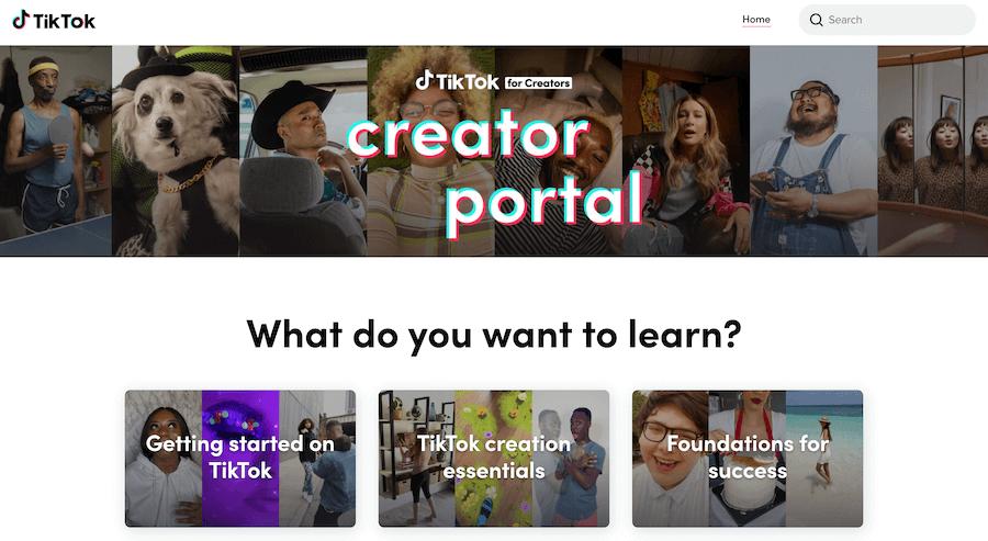 Creator Portal TikTok