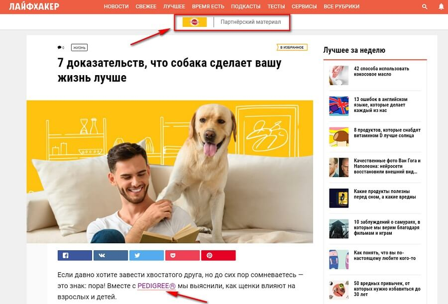 Нативная реклама в статье