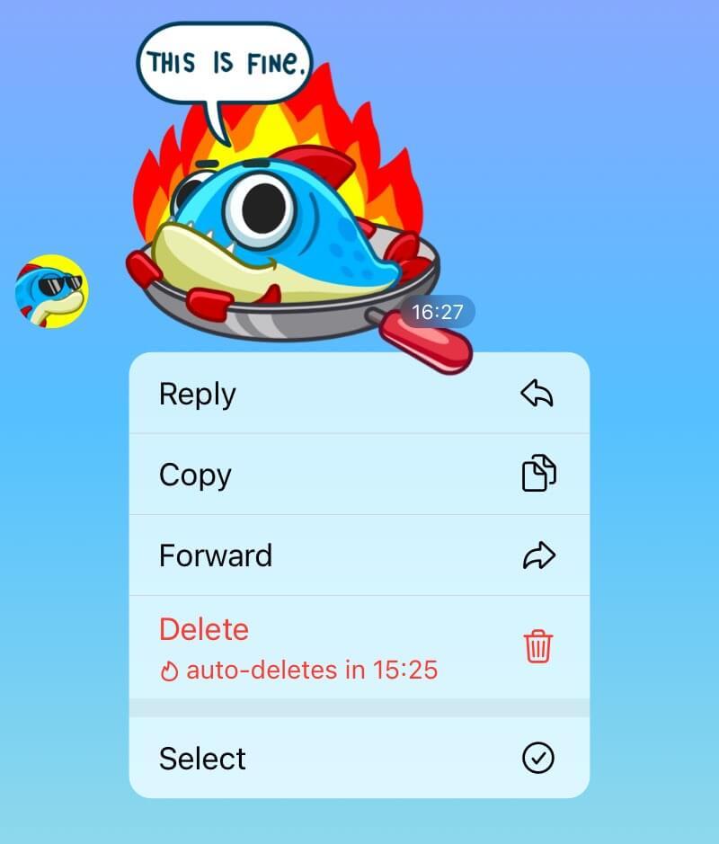 Автоматическое удаление сообщений